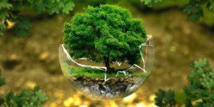 Ökologisch waschen ohne Waschmittel